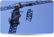 Tower Cranes / Hoists